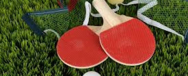 La table de ping-pong en bois & compact